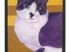 Purple Saku